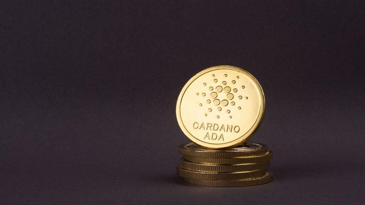 Cardano-coins