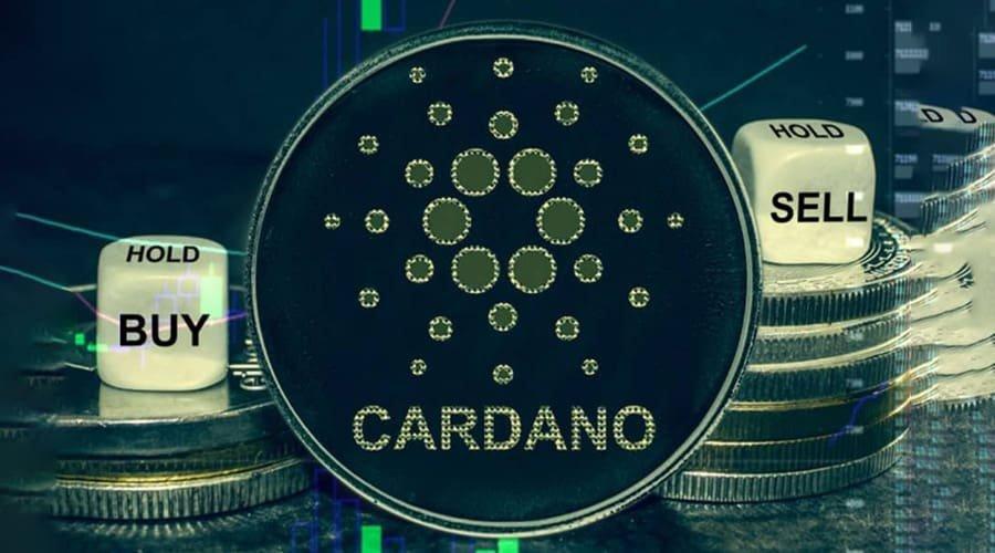 Cardano in New York